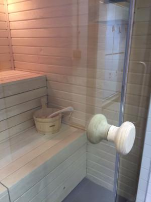 Glass Front Sauna