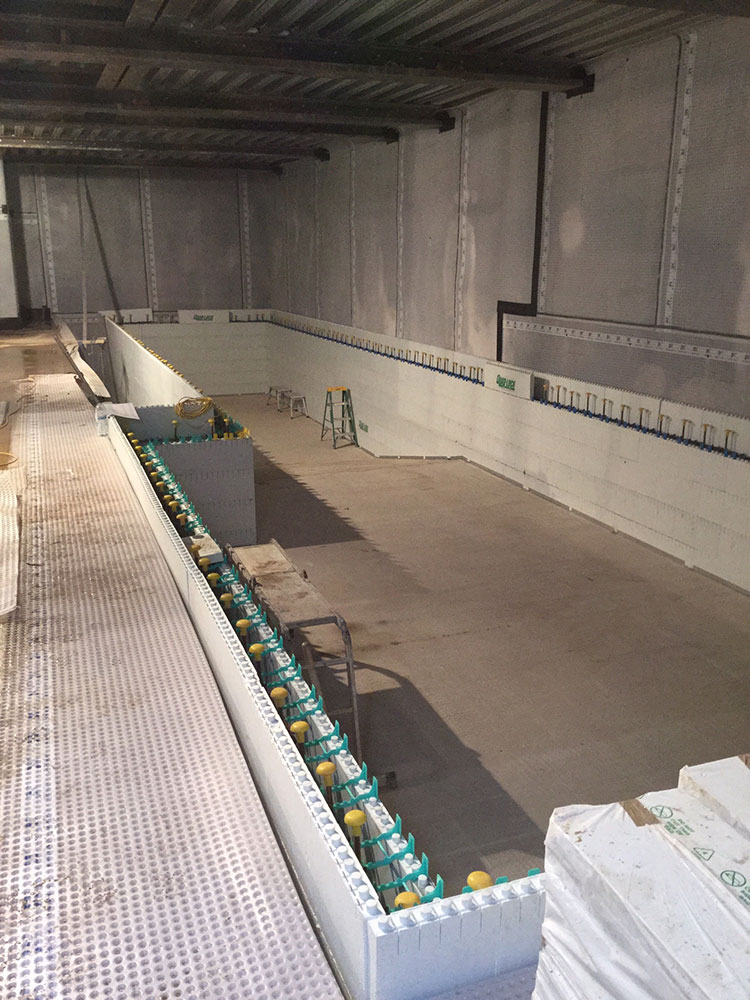 Swimming pool wall construction using quadlock for Basement swimming pool construction